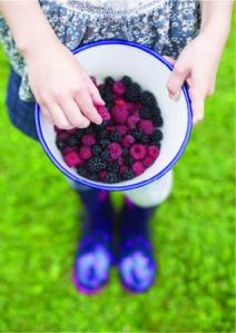 Berry_bowl