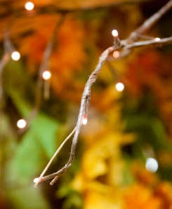Twig_light