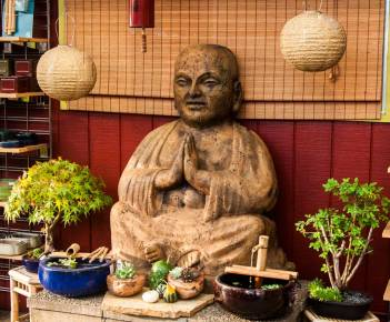 bonsai_budda
